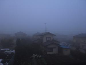 141110霧の朝