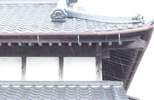 20150101粉雪
