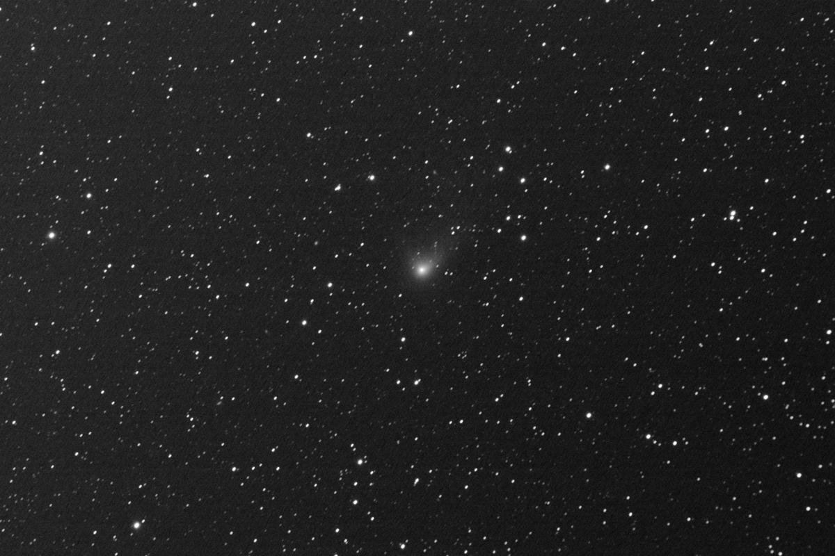 20160203パンスターズ彗星(C/2014S2)