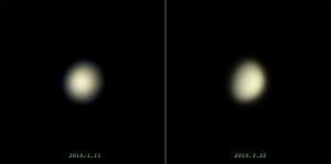 実写の金星比較