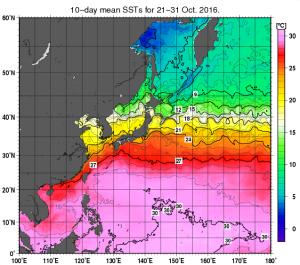 2016年10月下旬・海面温度