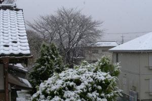 20161124降雪