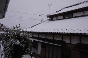 20130114降雪