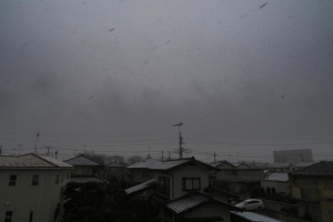 20180202雪