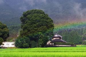 20160802低い虹