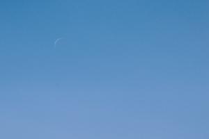 20190201金星と月の接近(昼)