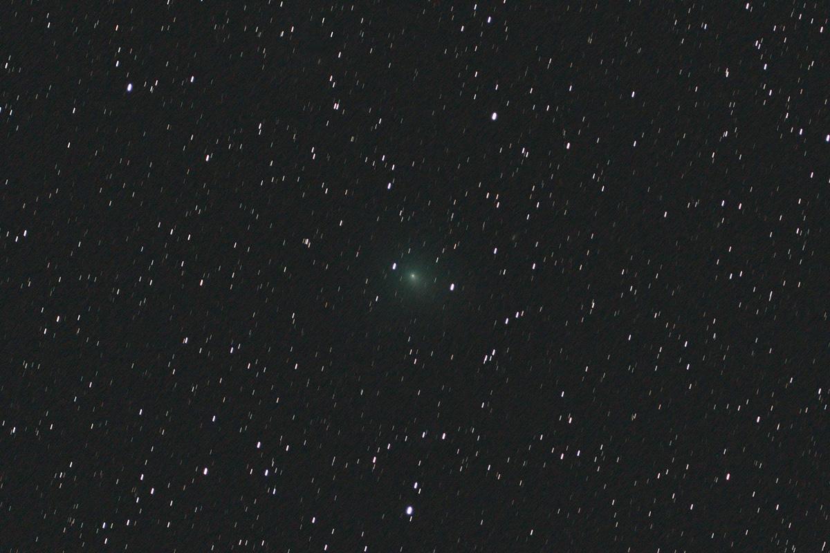 20190202ウィルタネン周期彗星(46P)