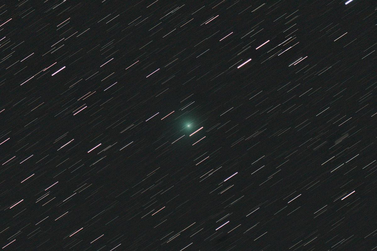 20190202岩本彗星(C/2018Y1)