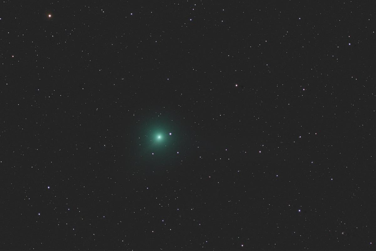 20190212岩本彗星(C/2018Y1)