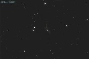20190312_2019np_NGC3254