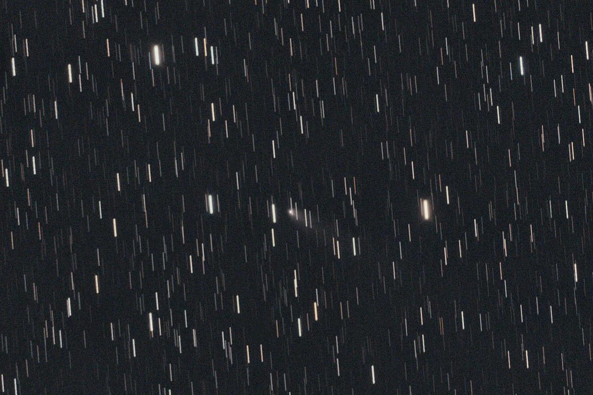 20191003マクノート彗星(260P)