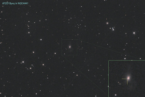 20200102_AT2019yvq in NGC4441
