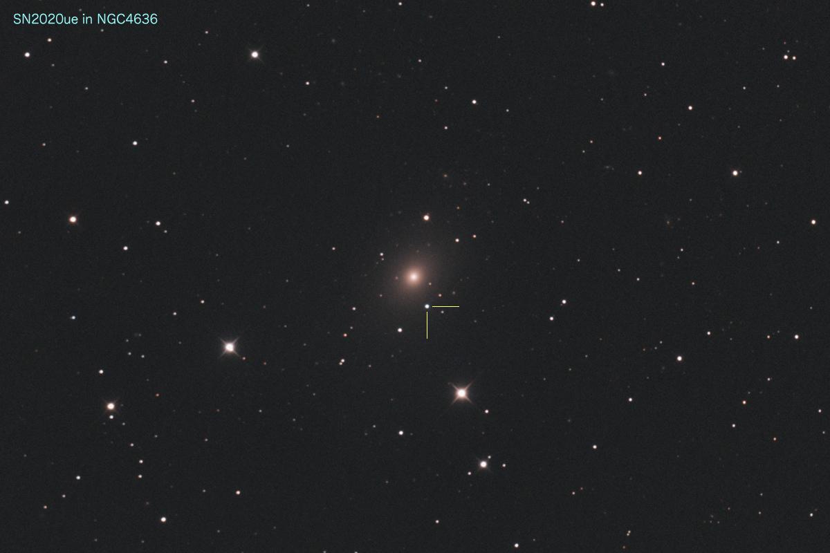 20200201_SN2020ue in NGC4636