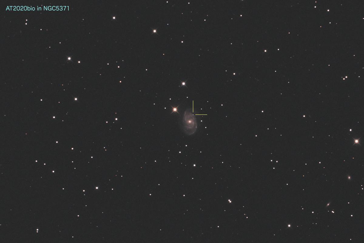 20200202_AT2020bio in NGC5371