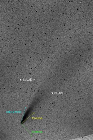 20200719ネオワイズ彗星(C/2020 F3)の尾
