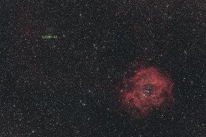 20210209ネオワイズ彗星(C/2021 A2)