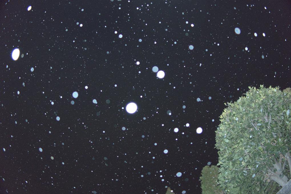20160225雪